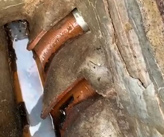 Destructive things rats can do after entering your drainage system