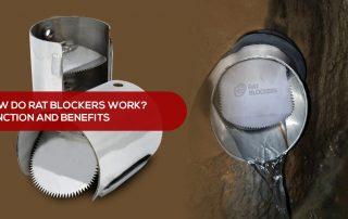 How do rat blockers work